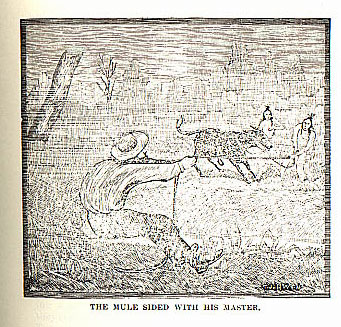 Mule Sided With His Master picture from the book Indian Depredations in Texas by J. W. Wilbarger