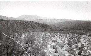 Picture of Aravaipa Creek. Place where Camp Grant Massacre took place