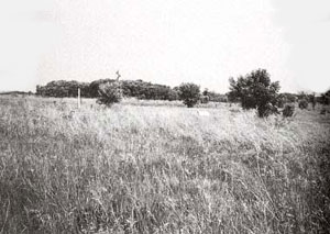 Picture of Birch Creek Battle Site