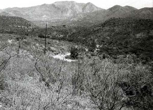 Picture of Davidson Canyon