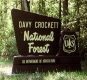 Picture at Davy Crockett National Forest
