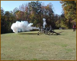 Picture of Cannons at Fort Pillow State Park