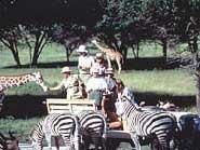Fossil Rim Wildlife Park Picture