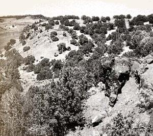 Picture of Massacre Rocks