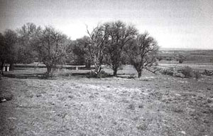 Picture of Mud Springs Site